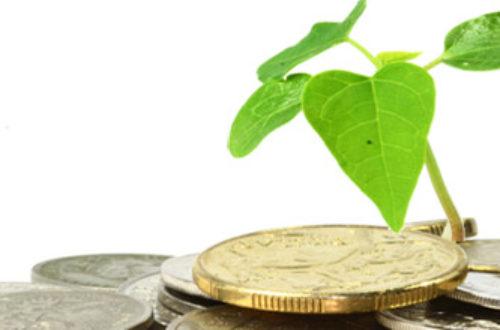 Article : Haiti.- Des outils économiques au service de l'environnement