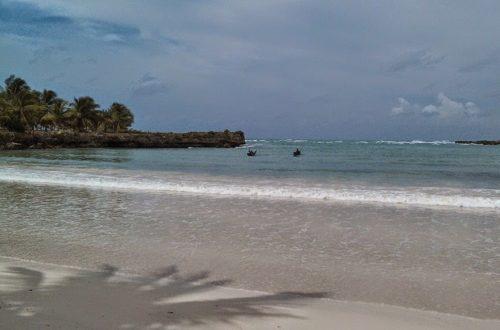 Article : Haïti : partir ou rester ?